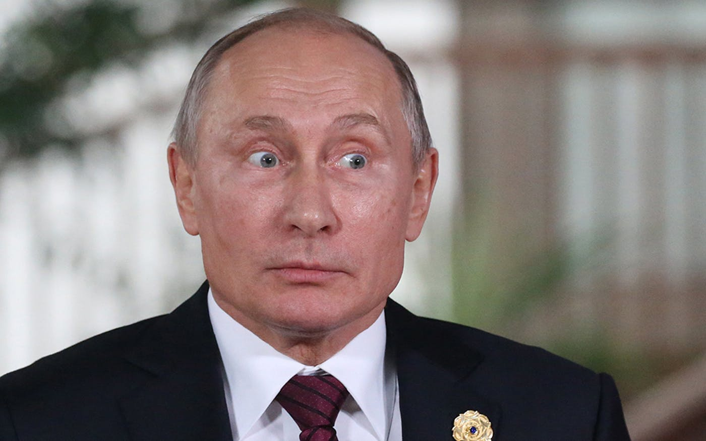 Vladimir Putin The Face Of Male Plastic Surgery Topic